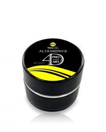4D Гел паста ALEXANDRA`S Pro Nail Art #3